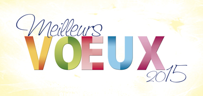 carte-de-voeux-2015-fantaisie